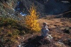 Natur170811WS.jpg