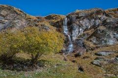 Natur171019WS.jpg